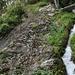 Richtung Brig wird die Suone zunehmend steiler und der Weg entsprechend auch. Eisenbügel helfen hier, eine Steilstufe zu überwinden.