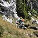 Das letzte Steilstück vor dem Gipfel. Das Drahtseil behindert hier eher, als es nützlich ist...