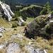 Durchwegs steiler Südanstieg auf den Chöpfenberg