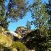im Aufstieg zum Sigriswiler Rothorn