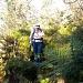 in der weglosen und wilden Querung von der Zettenalp nach Alpiglen, Wilerallmi