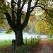 herrliche Herbststimmung!