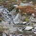 il fiume con i suoi colori