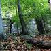 Der Bönistein (540m) liegt in Wald an der Südostkante vom Zeinigerberg (571m),die Felsen vom Bönisteinsind nur weglos (T2) von Forstwegen aus erreichbar. Die Felsen sind am Grund höhenartig eingebuchtet. Ausgrabungen haben ergeben, dass in der Mittelsteinzeit vor mehr als 10000 Jahren Jäger und Sammler hier gelebt haben. Der Bönistein mit seinen höhlenartigen Unterständen gilt aus diesem Grund als Kulturgut von nationaler Bedeutung.