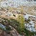 Alpe dei Laghetti vom Aufstieg zur Alpe Picoll