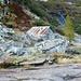 Die Selbstversorgerhütte Alpe di Piotta