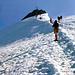 Karl am Gipfelgrat der Wildspitze Süd<br />und so sieht der Grat im Oktober 2011 aus [http://www.hikr.org/gallery/photo645884.html?post_id=43045#1 Bild von Alpensucht]<br />c Karri
