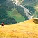 Wieder im Abstieg : Hübscher Wiesenrücken mit Tiefblick ins Gasteretal