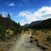 Auf dem Weg zur Alp Grimmels