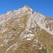 Schlussaufstieg auf's Fromberghorn: Straight on Top