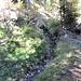kurz nach erreichen der Ladu-Süe. Ohne Wasser