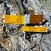 Abstieg vom Monte Zucchero nach Sonogno - Neue Wegweiser mit Sky-Race-Zeiten