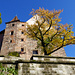 Burg im Herbstschmuck 1