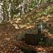 Brunnen im Wald bei Costapiana