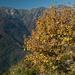 Herbststimmung zwischen Corte Nuovo und Bardughè