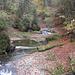 schöne Herbststimmung an der Argen im Eistobel