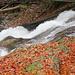 in malerischen Wellen sprudelt das Wasser dahin