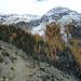 oberhalb St. Moritz in der Gianda Naira