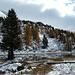 Hahnensee im Schnee