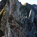 Selten begangene Aufstiegsroute auf den Scherenspitz Ost - erstaunlicherweise von allen Hikrs ausser uns gemieden