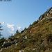 Début de la randonnée, près du Col des Montets
