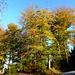 Üetli-Herbst