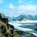 Grandioser Blick auf den Kanderfirn. Von hier aus kann man sogar den Eiger sehen ! Umwölkt rechts das Jungfraumassiv.