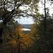 Sichtfenster zum Langen See II