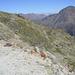 Nederkogel mit meinem Gipfelerfolg P.2830