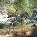 Dieser Pfahl, und sonst nix, markiert den Ausstieg aus dem Baranco in Richtung Frigiliana