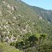 An der Wasserleitung in der Mitte des Bildes war marmotta in Richtung Cortijo del Iman unterwegs