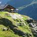saftig grünes Gras an der Alpeiner Alm
