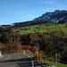 Zettenalp, die Hügelige Gegend von 1100m bis 1600m unterhalb des steilen Sigriswiler Grates. Von hier sieht es nicht nach viel Schnee aus auf der Zettenalp...