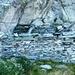 Die Ruine der Alpe Sottosasso am Aufstieg zur Alpe Piatto