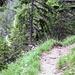 Am Weg zur Tannheimer Hütte