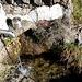 Fontana alla quota di ca.1370 m.