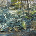 """die zahlreichen Ruinen bei """"Le Casci"""""""