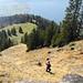 Aufstieg über steiles Gras auf der Tieregg. Ganz unten ist noch der Wanderweg zu erkennen, den wir hier verlassen haben