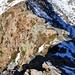 Hier wird's alpin. Eine Schlüsselstelle auf dem Grat zum Camoghè.