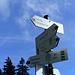 Der Wegweiser in der Gündlesscharte verheißt den Gipfel in greifbarer Nähe...