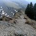 Das bleibt übrig, wenn Nagelfluh verwiddert: loses, rundes Kieselsteingeröll - unbequem im Aufstieg, gefährlich im Abstieg.