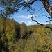 Schwarzwald für einmal ganz bunt