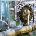 Wasserspiel bei Bleiken im Neckertal