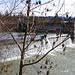 Flusskraftwerk bei Wannenflue 1