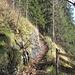 wieder geht's abwärts, sogar gesichert, der Naturbrücke Räbloch entgegen