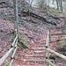 auf der Gegenseite ginge es hier hoch zur sumpfigen Ebene von Flüegfäll