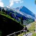 Kurz nach der Einmündung des Gurnigelweges auf die Gemmipassroute.<br /> Hinten Rinderhorn (3448m) und Chly Rinderhorn.