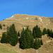 Alpe Zafernmaisäss mit der Südflanke des Zafernhorns - die Stahlbox am hölzernen Gipfelkreuz glänzt in der Sonne.