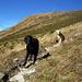 Ein paar Meter weiter, wird der Gipfel sichtbar. Der Anstiegsweg verläuft auf dem langen Grat.