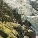 Vom Hüttenweg aus hat man beste Einblicke in die Kaskaden des Unteren Grindelwaldgletschers.